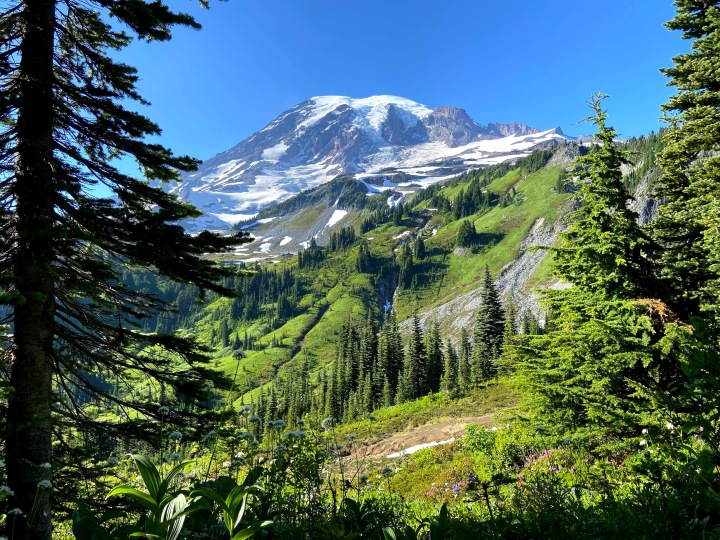 Hiking the Skyline Trail at Mount Rainier National Park